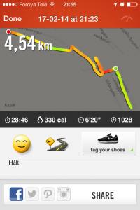 runninglog20140217